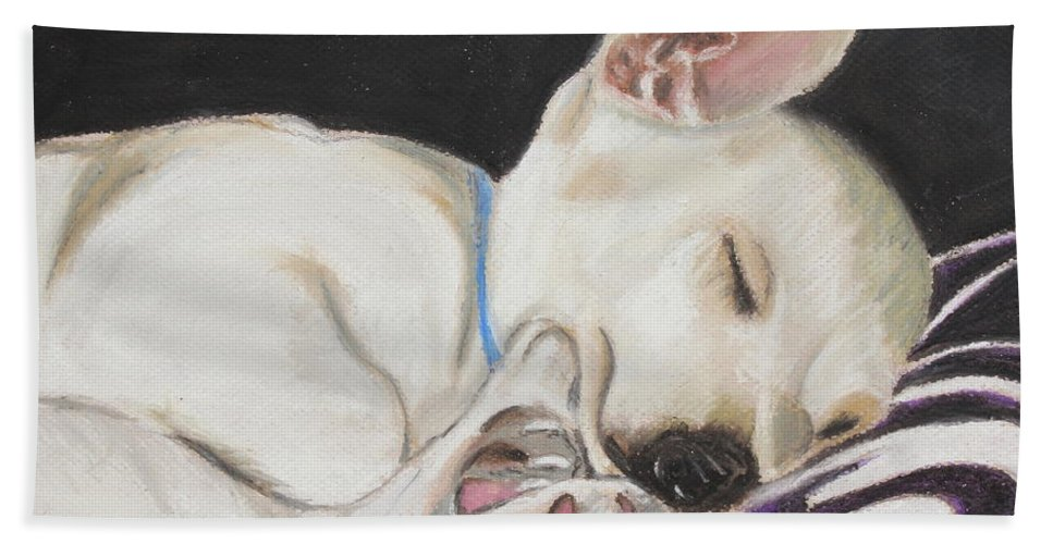 Mammal Hand Towel featuring the painting Hanks Sleeping by Jeanne Fischer