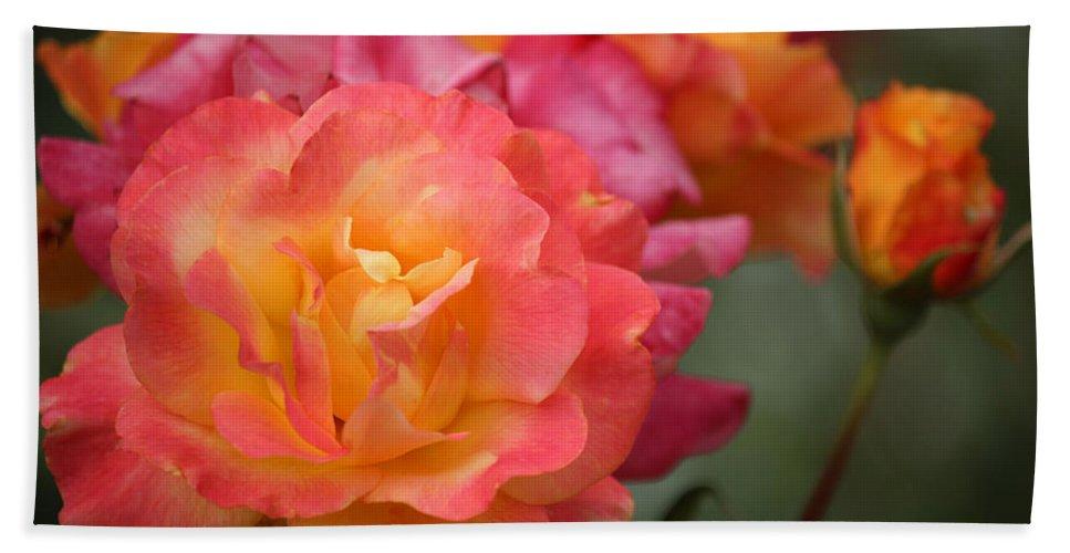 Roses Hand Towel featuring the photograph Harmony by Rowana Ray