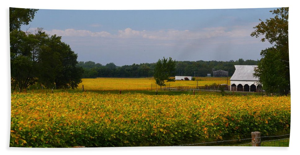 Bath Sheet featuring the photograph Harvest Time by Kim Blaylock