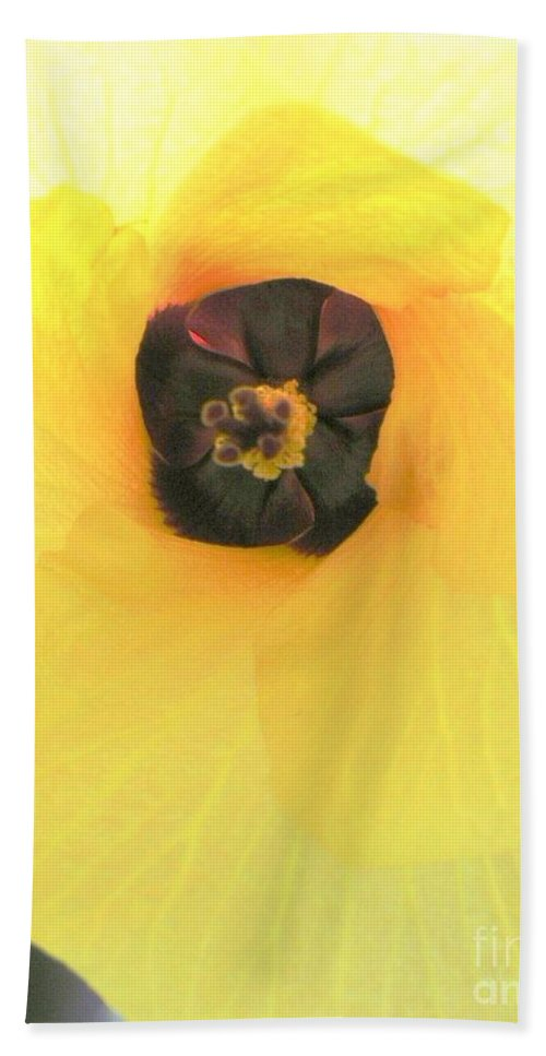 Hau Blossom Hand Towel featuring the photograph Hau Blossom by Mary Deal