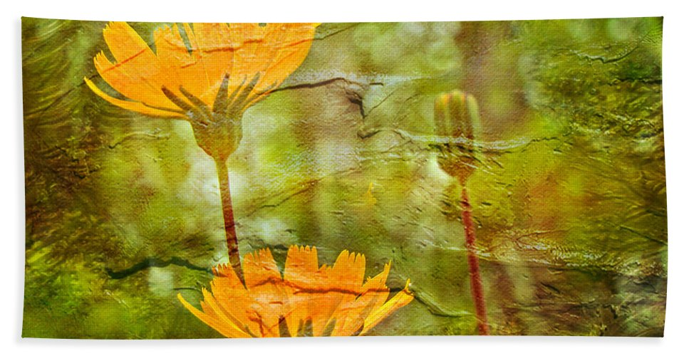 Wildflower Hand Towel featuring the photograph Hawkweed Wildflower by Mother Nature