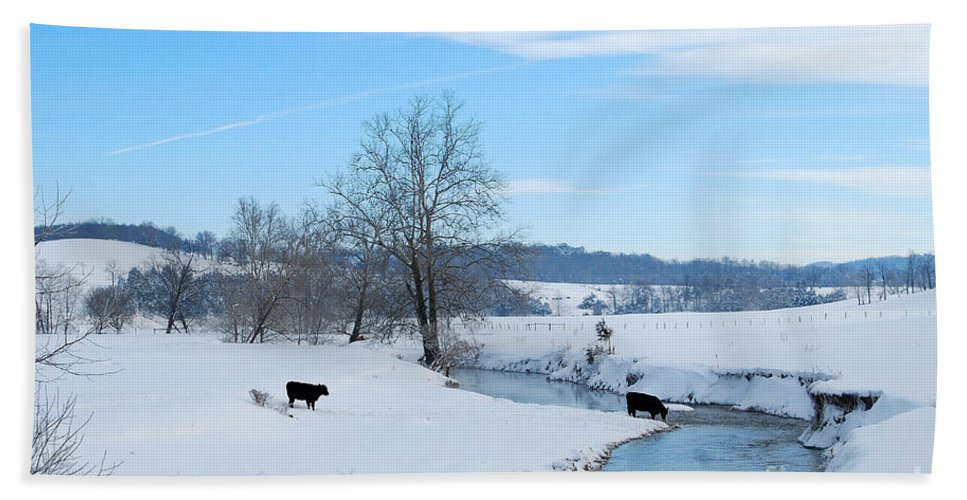 Hays Creek Bath Sheet featuring the photograph Hays Creek Winter by Todd Hostetter