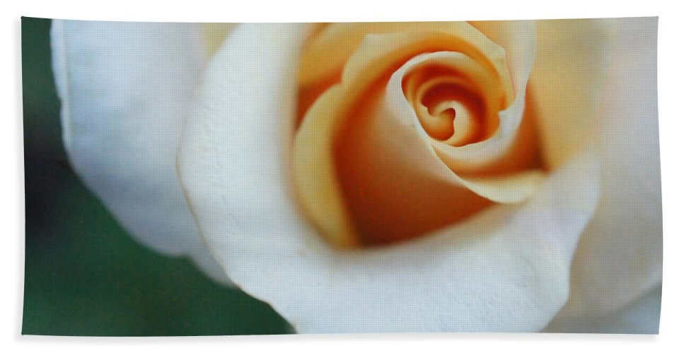 Peach Rose Hand Towel featuring the photograph Hazy Rose by TK Goforth