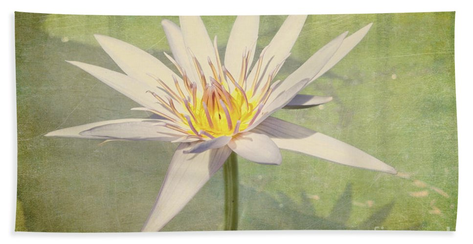 Waterlily Hand Towel featuring the photograph Heart Of Gold by Linda Lees