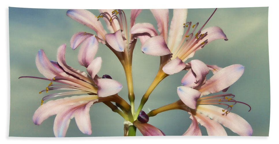 Surprise Lily Hand Towel featuring the photograph Heavenly Lilies by Elizabeth Winter