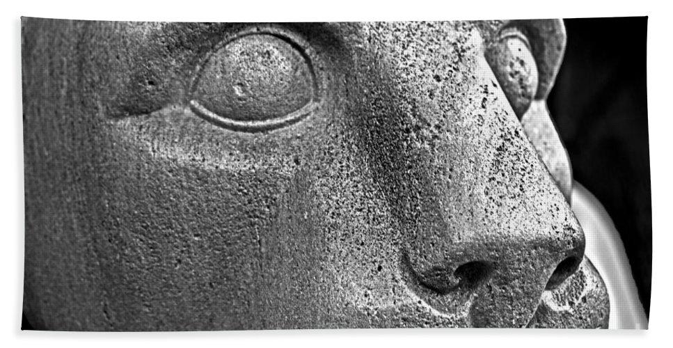 Sculpture Bath Sheet featuring the photograph Heinz Warneke's Mountain Lion by Tom Gari Gallery-Three-Photography