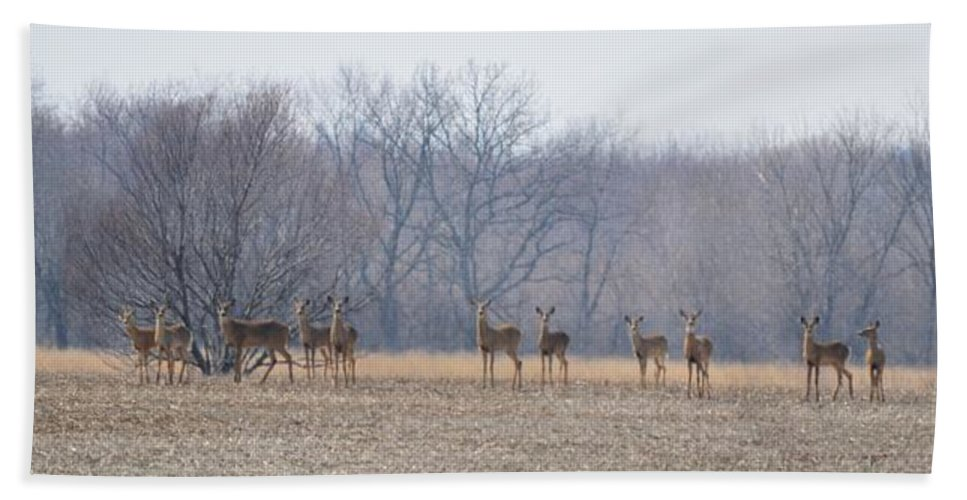 Deer Bath Sheet featuring the photograph Herd Mentality by Bonfire Photography