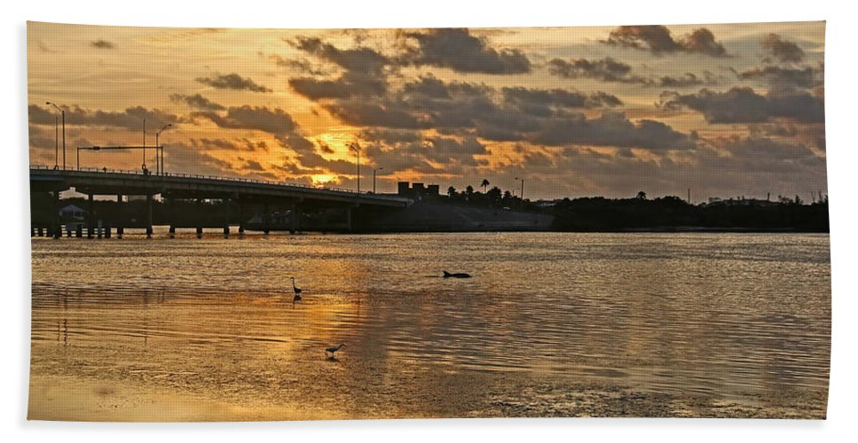 Sunset Hand Towel featuring the photograph Herons And Egrets And Porpoise Oh My by HH Photography of Florida