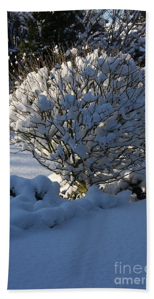 Winter Bath Sheet featuring the photograph Hibiskus In The Wintertime by Christiane Schulze Art And Photography