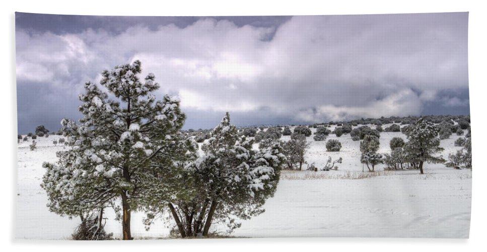 Winter Bath Towel featuring the photograph High Desert Snow by Saija Lehtonen