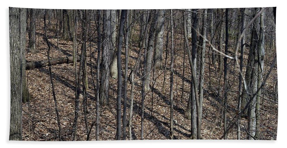 Forest Floor Hand Towel featuring the photograph High Ground by Joseph Yarbrough