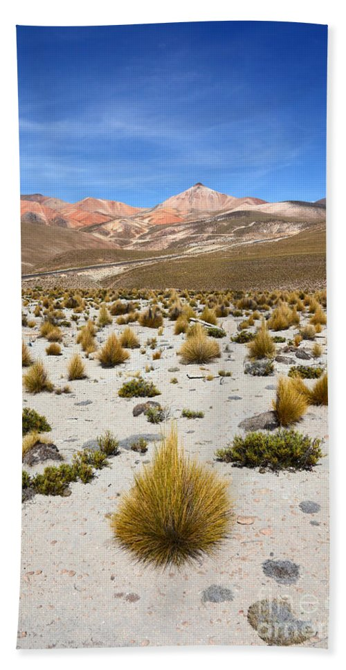 Chile Hand Towel featuring the photograph High In The Chilean Altiplano by James Brunker