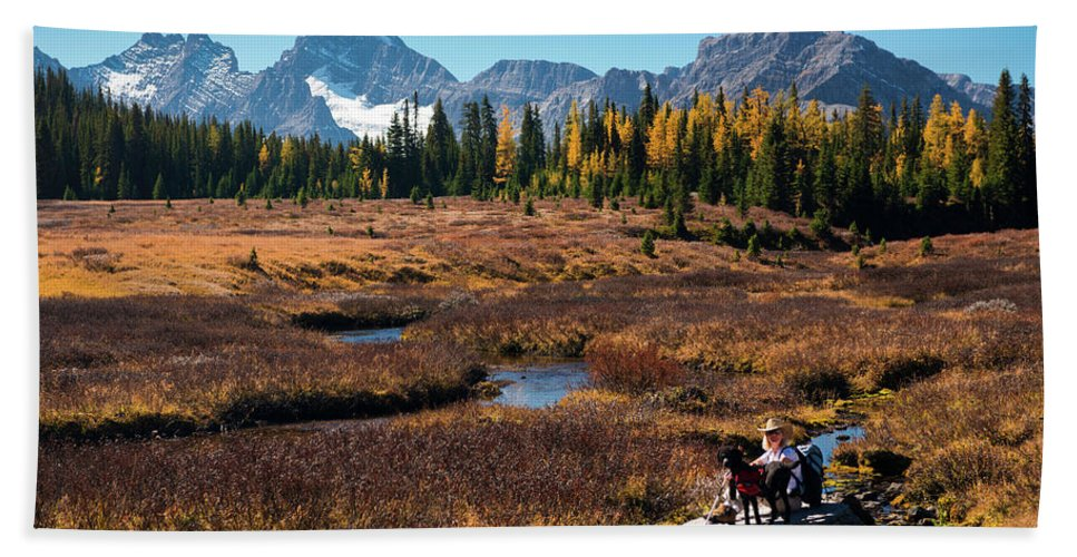 Photography Hand Towel featuring the photograph Hiker With Black Dog Along Chester by Panoramic Images