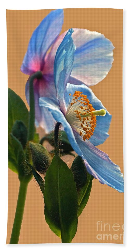 Himalayan Poppies Bath Sheet featuring the photograph Himalayan Wonder Two by Byron Varvarigos