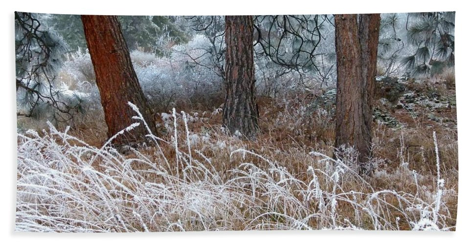 Hoarfrost 22 Bath Towel featuring the photograph Hoarfrost 22 by Will Borden