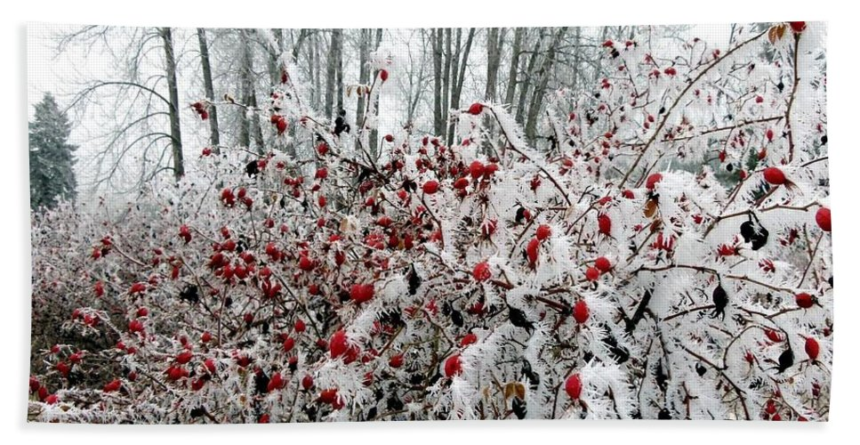 Hoarfrost 25 Bath Towel featuring the photograph Hoarfrost 25 by Will Borden