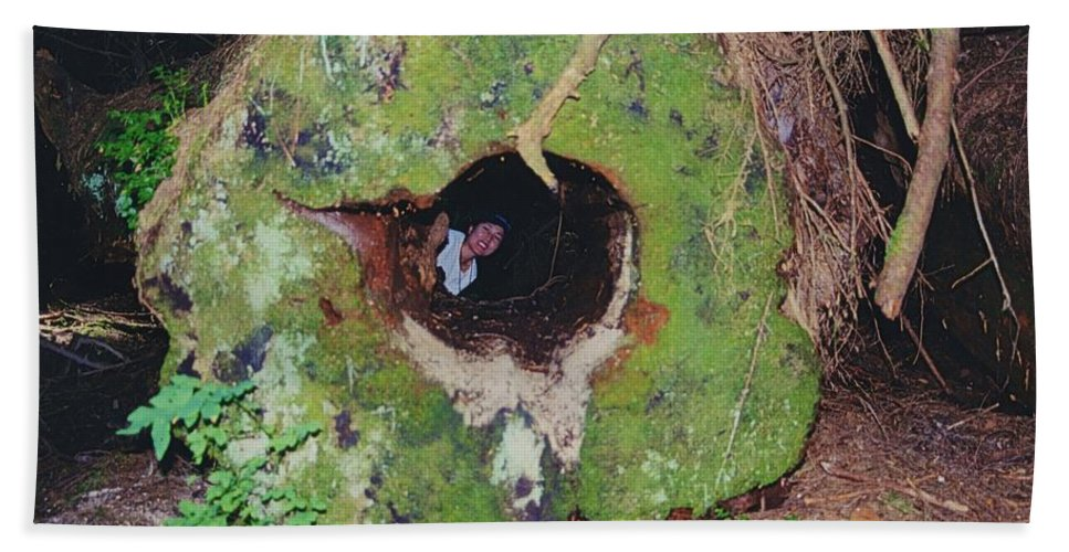 Hollow Log Hand Towel featuring the photograph Hollow Log by Jim Hogg