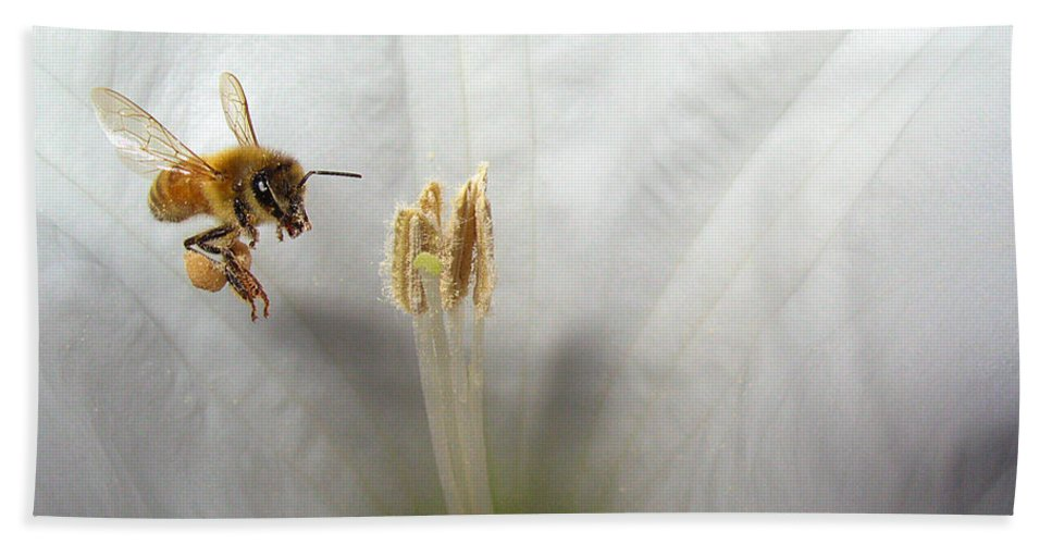 Bee Bath Sheet featuring the photograph Honey Bee Up Close And Personal by Joyce Dickens