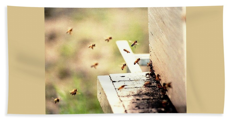 Honey Bees Hand Towel featuring the photograph Honey Bees by Elaine Burlew