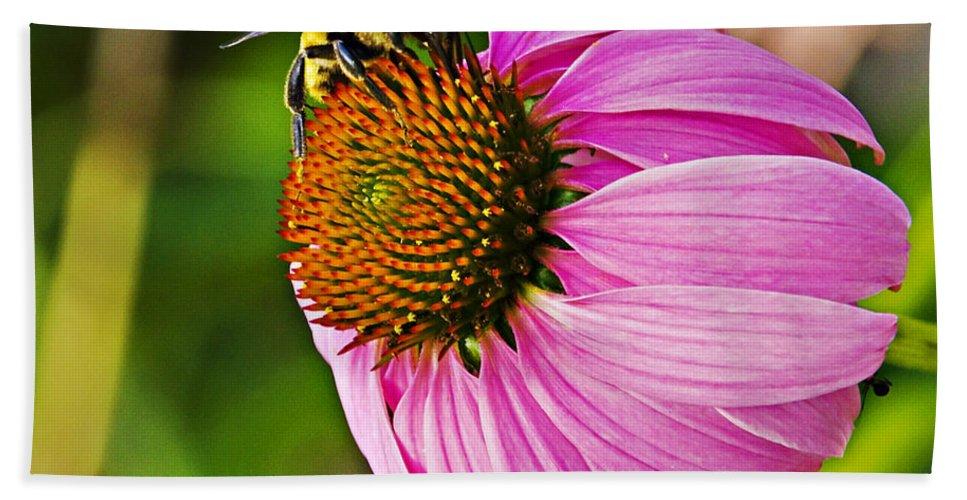 Flower Bath Sheet featuring the photograph Honeybee On Echinacea Flower by Walter Herrit