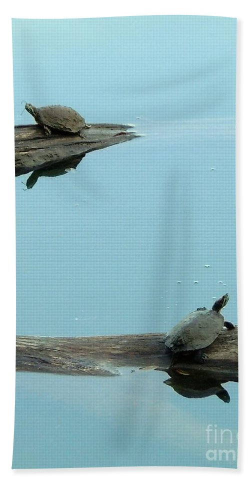 Turtles Bath Sheet featuring the photograph Hooked On You by Robert ONeil