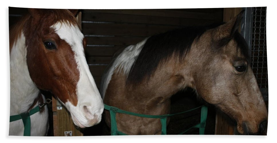 Two Horses Bath Sheet featuring the photograph Horse 11 by David Yocum