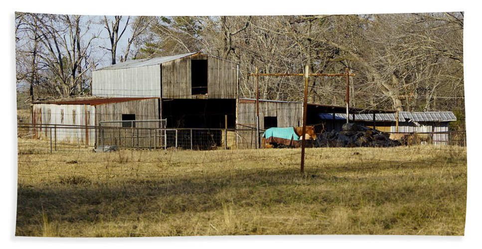 Barn Bath Sheet featuring the photograph Horse And Barn by Darrell Clakley