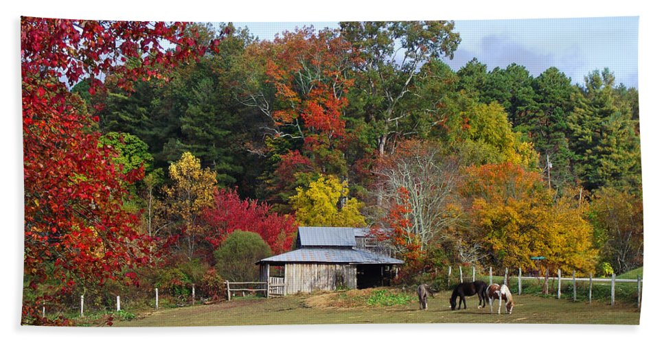 Duane Mccullough Hand Towel featuring the photograph Horse And Barn In The Fall 3 by Duane McCullough