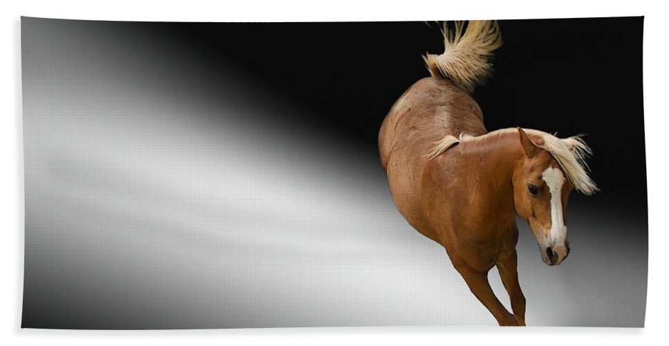 Field Bath Sheet featuring the photograph Horse by FL collection