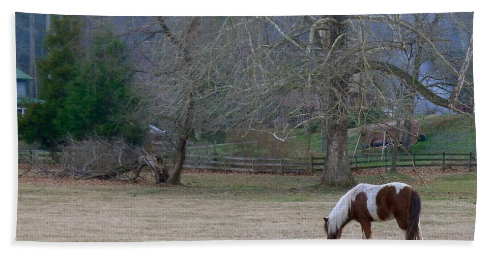 Horse Hand Towel featuring the photograph Horse In The Mist by Denise Mazzocco