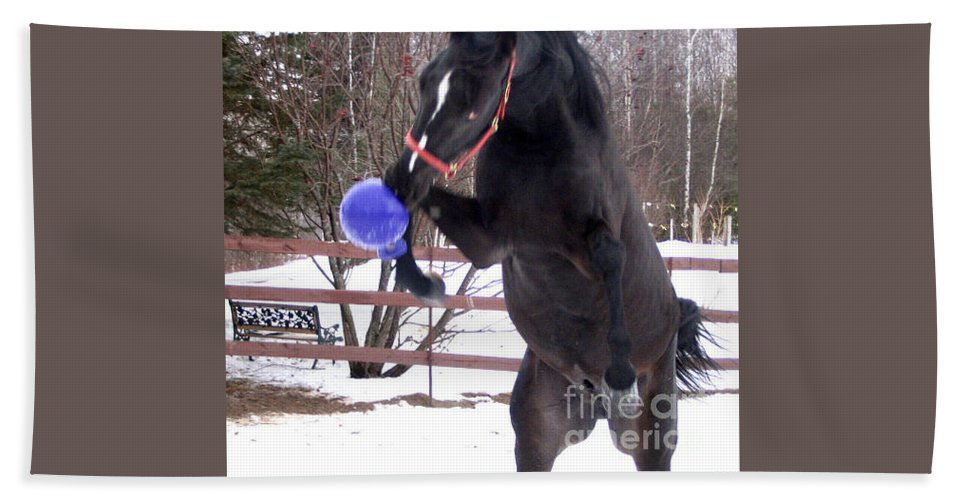 Horse Hand Towel featuring the photograph Horse Playing Ball by Line Gagne