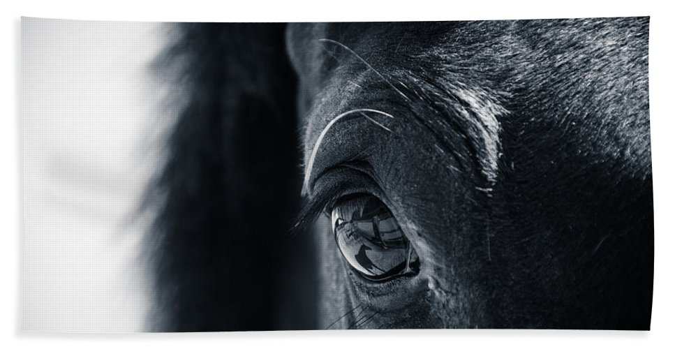 Horse Hand Towel featuring the photograph Horse Reflection by Michele Wright