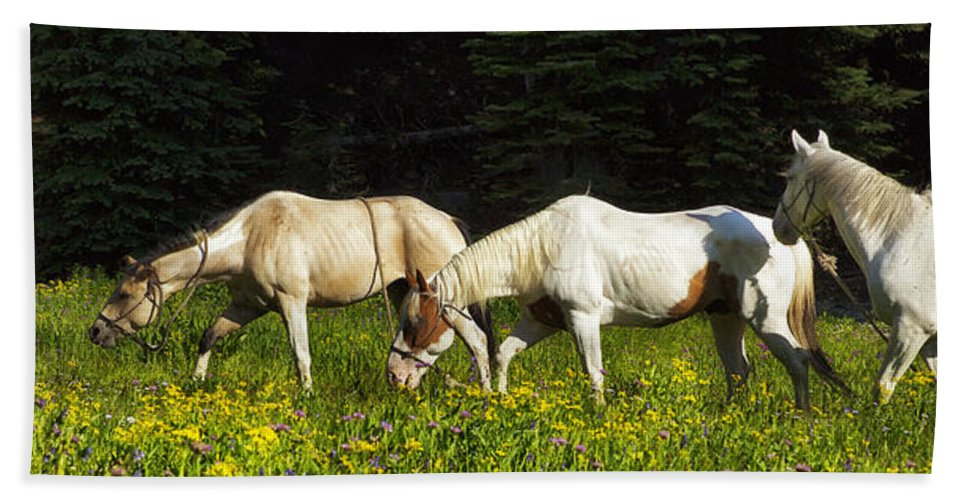 Horse Hand Towel featuring the photograph Horses Among Wildflowers by Belinda Greb