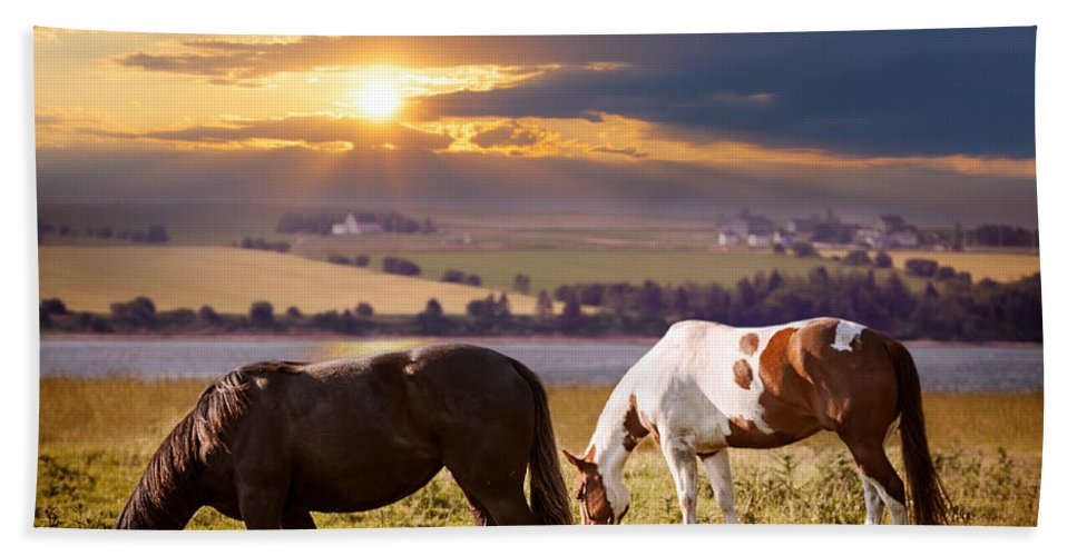 Horses Hand Towel featuring the photograph Horses Grazing At Sunset by Elena Elisseeva