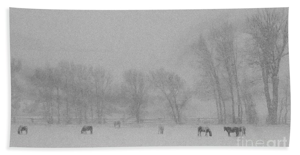 Horses Bath Sheet featuring the photograph Horses In The Snow  #2547 by J L Woody Wooden