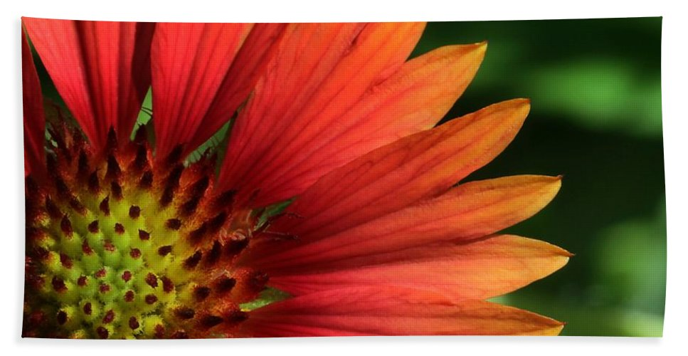 Flower Hand Towel featuring the photograph Hot Flames by Sabrina L Ryan