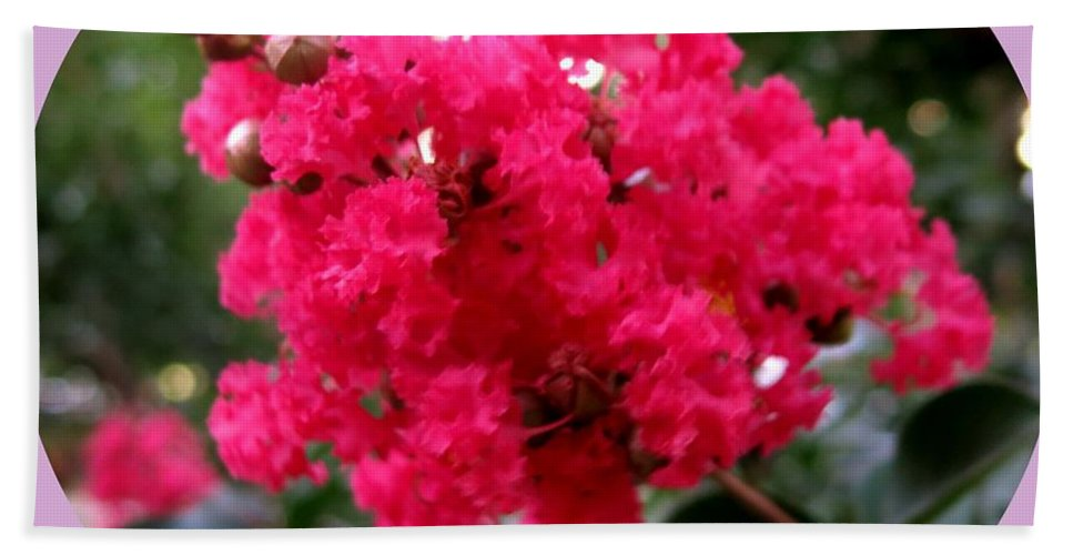 Flowers Bath Sheet featuring the photograph Hot Pink Crepe Myrtle Blossoms by Leanne Seymour