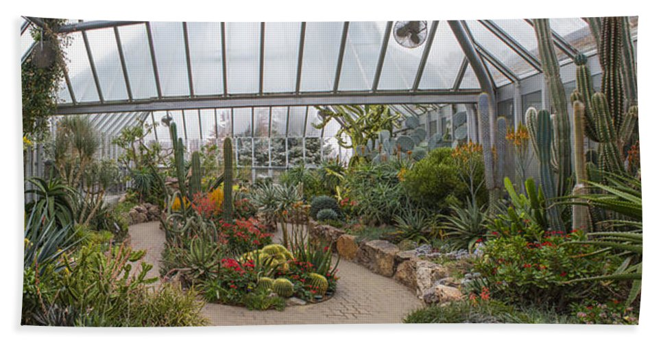 Greenhouse Bath Sheet featuring the photograph Hothouse by Robert Storost