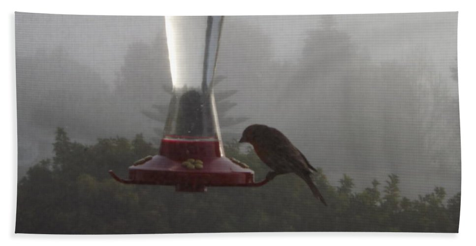 House Finch Bath Sheet featuring the photograph House Finch In The Fog by Jussta Jussta