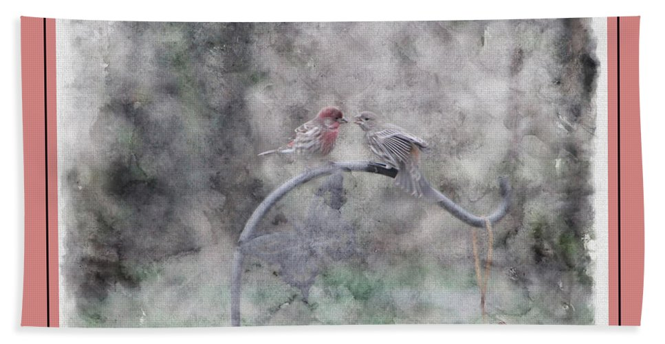 Finch Bath Sheet featuring the photograph House Finch - Kiss Me by Ericamaxine Price