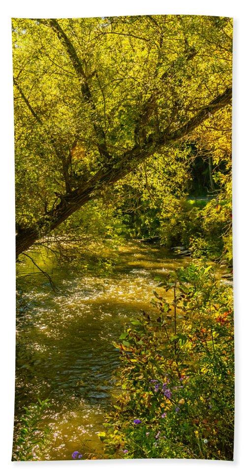 Steve Harrington Bath Sheet featuring the photograph Humber River 5 by Steve Harrington