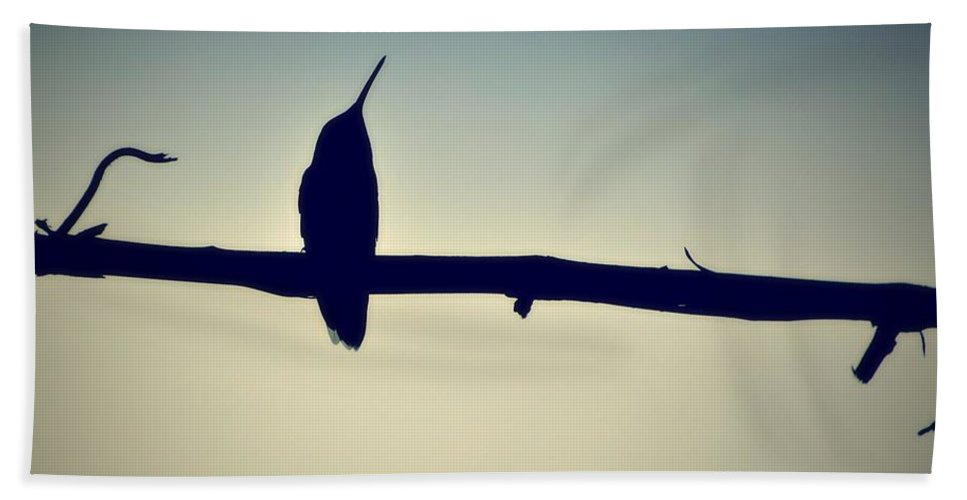 Art Photography Bath Sheet featuring the photograph Humingbird At Sunset by Marysue Ryan