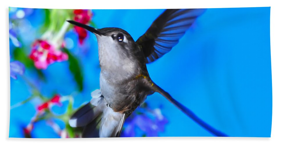 Hummer Hand Towel featuring the photograph Hummer And Flowers On Acrylic by Randall Branham