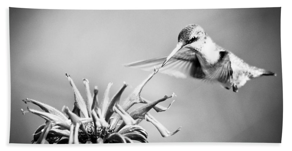 Black And White Hand Towel featuring the photograph Hummingbird Black And White by Cheryl Baxter
