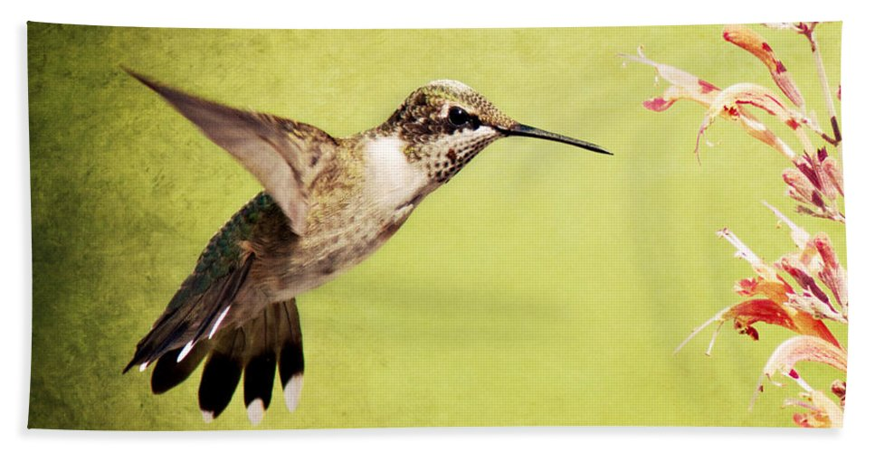 Birds Bath Sheet featuring the photograph Humming Bird In Flight by Pam Holdsworth