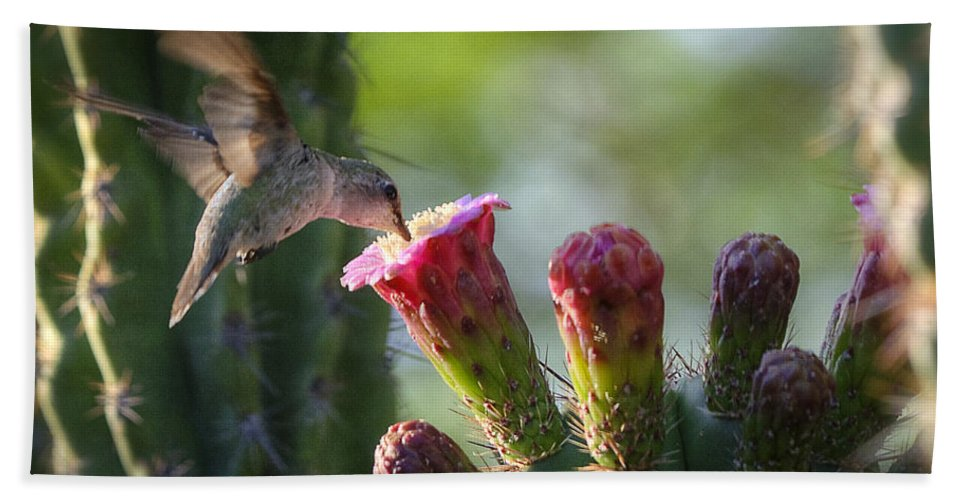Hummingbird Bath Towel featuring the photograph Hummingbird Breakfast Southwest Style by Saija Lehtonen
