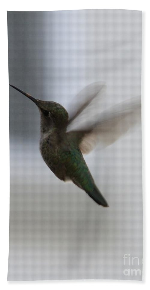 Hummingbird Hand Towel featuring the photograph Hummingbird In Flight by Carol Groenen