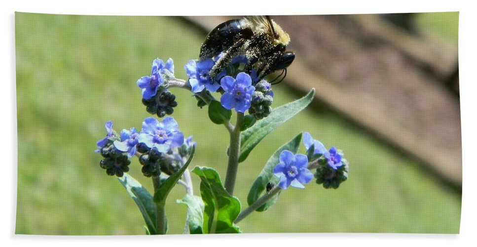 Bee Hand Towel featuring the photograph Hungry For Pollen by Tammy Garner