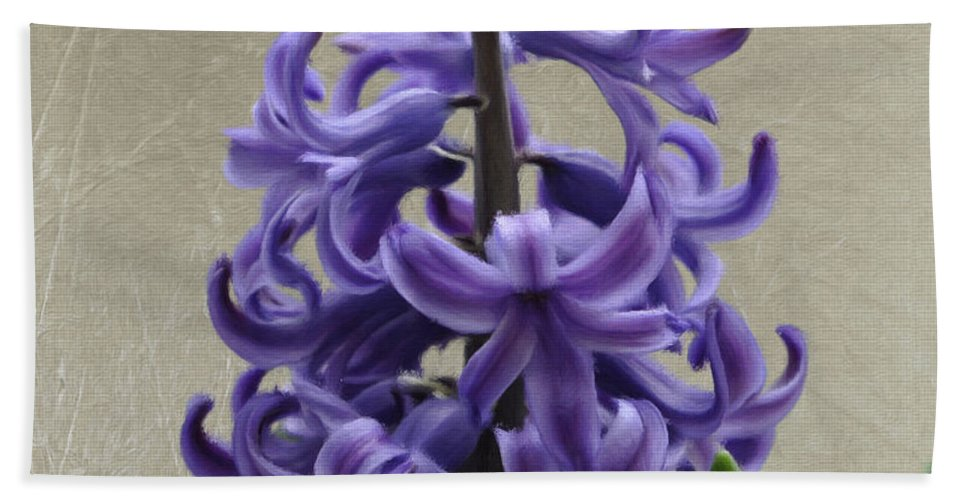 Bloom Hand Towel featuring the painting Hyacinth Purple by Jeffrey Kolker