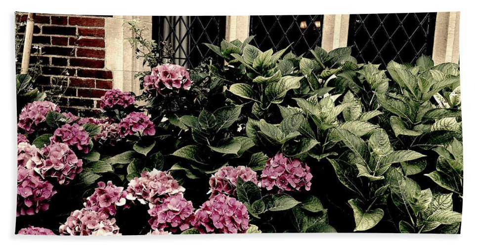 Photograph Hand Towel featuring the photograph Hydrangea Blossoms by Nicole Parks